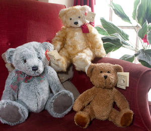 Teddy Bear Shop